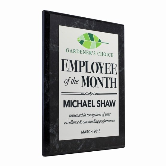 Employee Of the Month Photo Unique Personalized Employee the Month Retro Award Plaques