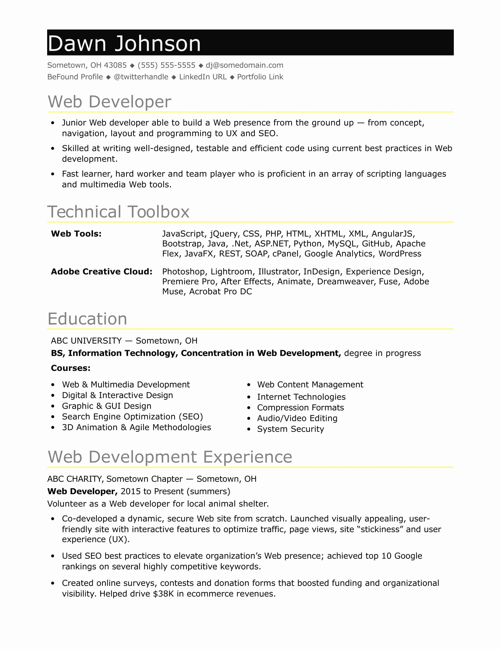 Entry Level It Resume with No Experience Beautiful Sample Resume for An Entry Level It Developer