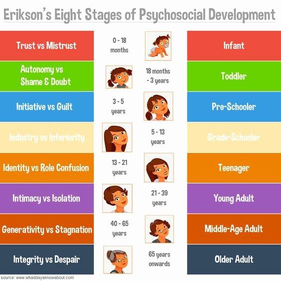 Erikson Stage Of Development Chart Awesome Psychology Essence Psychosocial theory Of Development
