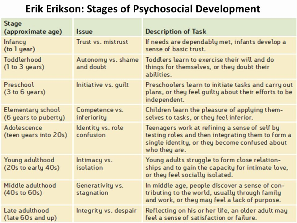 Erikson Stages Of Development Chart Pdf Elegant Developing Through the Life Span Ppt Video Online