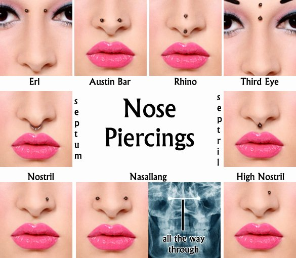 Facial Piercing Pain Chart Elegant Types Of Nose Piercings Sacramento Nose Piercing