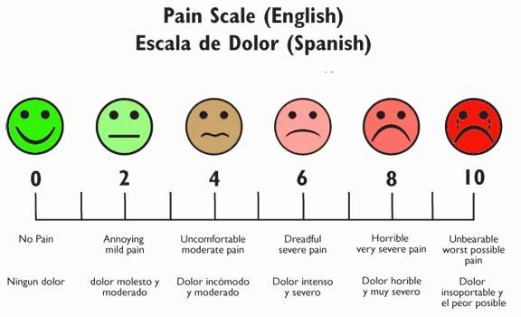 Facial Piercing Pain Chart Fresh Pain Scale Student Nurse Laura