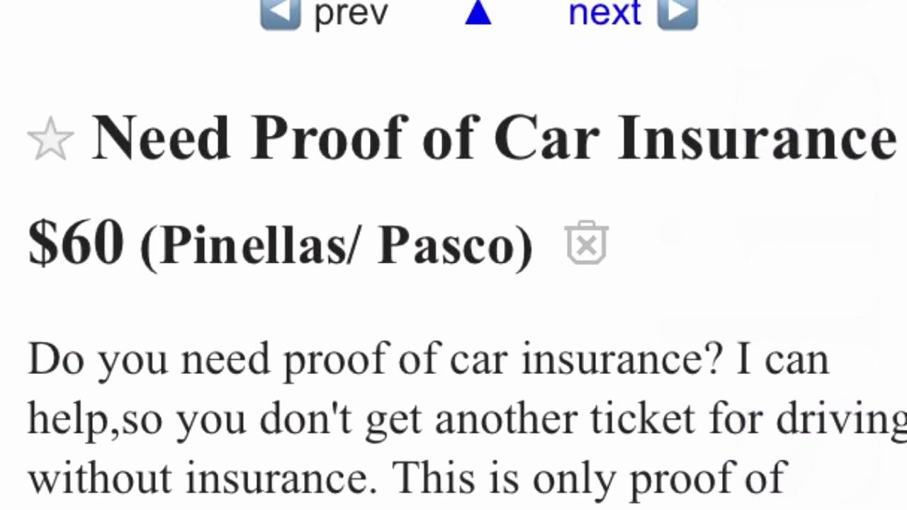 Fake Auto Insurance Template Unique Digital Short Man Sells Fake Insurance Cards