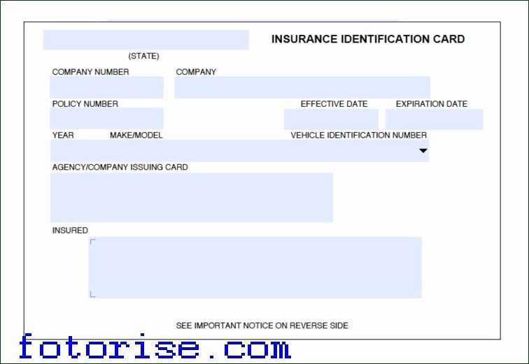 Fake Car Insurance Template Luxury Fake Insurance Card Template