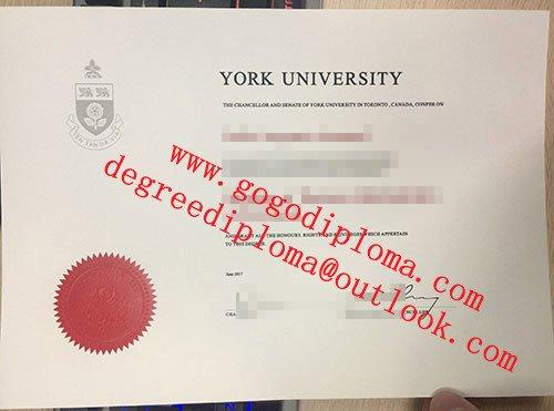 Fake Graduation Photo Maker Elegant York University Degree Fake York University Diploma Maker