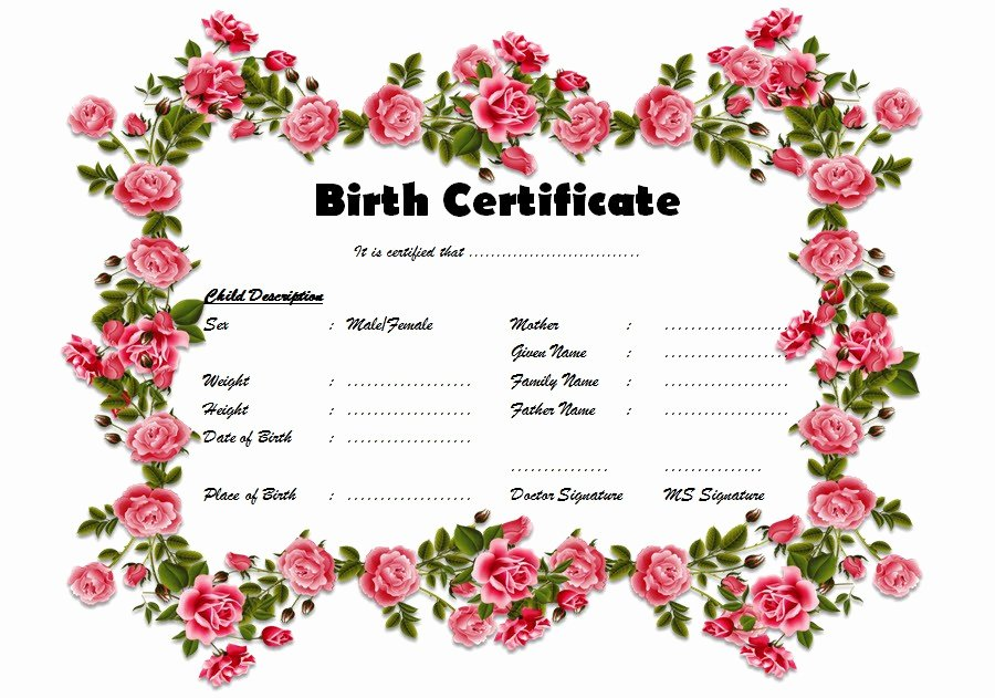 Fillable Birth Certificate Template Best Of Fillable Birth Certificate Template Free [10 Various Designs]