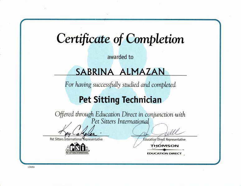 Firearms Training Certificate Template Best Of Blank Birth Certificates Cake Ideas and Designs