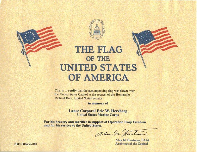 Flag Flown Certificate Template Awesome 30 Of Flag Flown Template