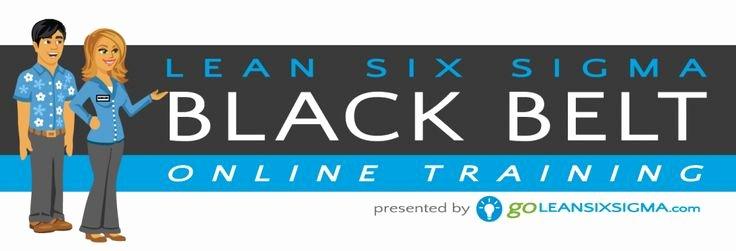 Free Black Belt Certificate Template New 7 Best Black Belt Training & Certification Images On