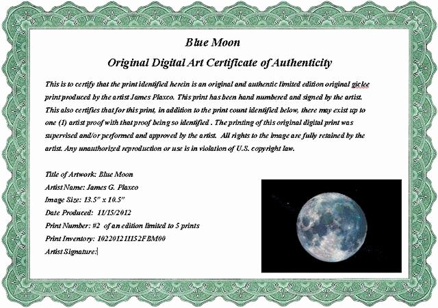 Free Certificate Of Authenticity for Artwork Template Lovely 20 Certificate Of Authenticity Templates Free Download