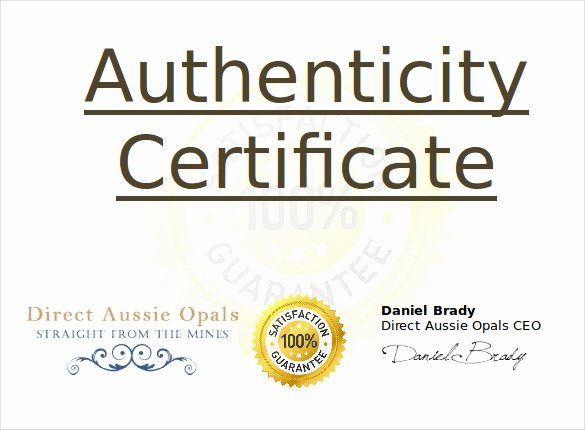 Free Certificate Of Authenticity Template Unique Certificate Authenticity Template 2016