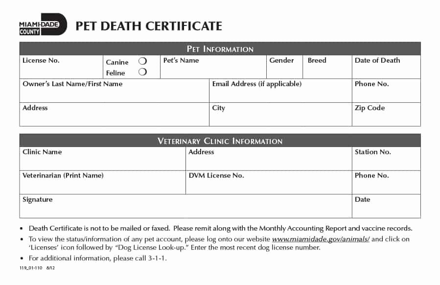 Free Death Certificate Template New 37 Blank Death Certificate Templates [ Free]
