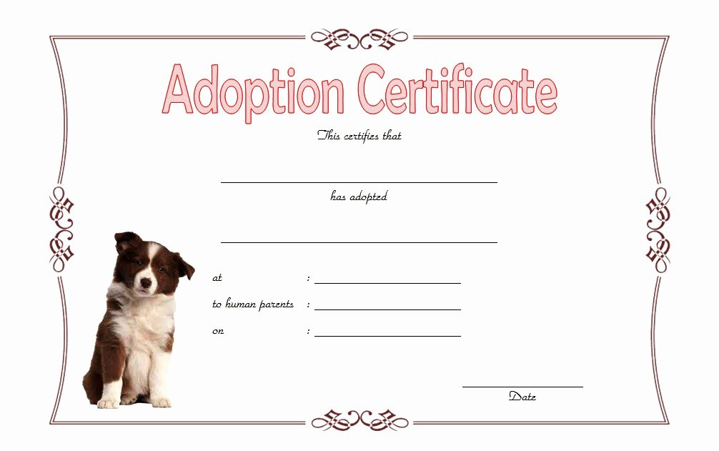 Free Dog Birth Certificate Template Microsoft Word Beautiful Pet Adoption Certificate Template 10 Best Ideas