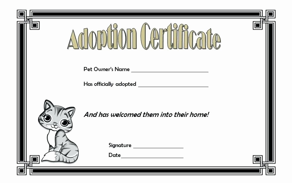 Free Dog Birth Certificate Template Microsoft Word Fresh Pet Birth Certificate Template – Stagingusasportfo