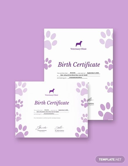 Free Dog Birth Certificate Template Microsoft Word New Birth Certificate Template 38 Word Pdf Psd Ai