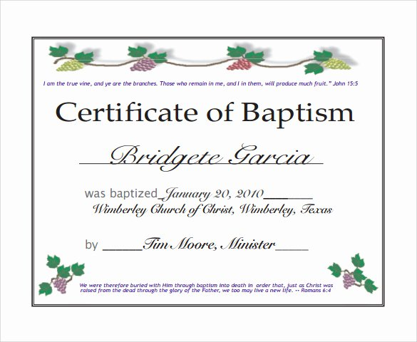 Free Editable Baptism Certificate Template Best Of 29 Of Church Baptism Certificate Template for