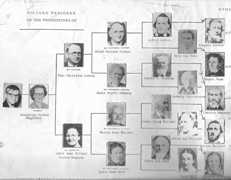 Free Family History Book Template Unique 17 Best Family History Book and Other Templates Images