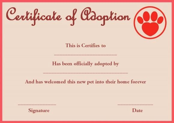 Free Pet Adoption Certificate Template Awesome 10 Best Pet Adoption Certificate Images On Pinterest