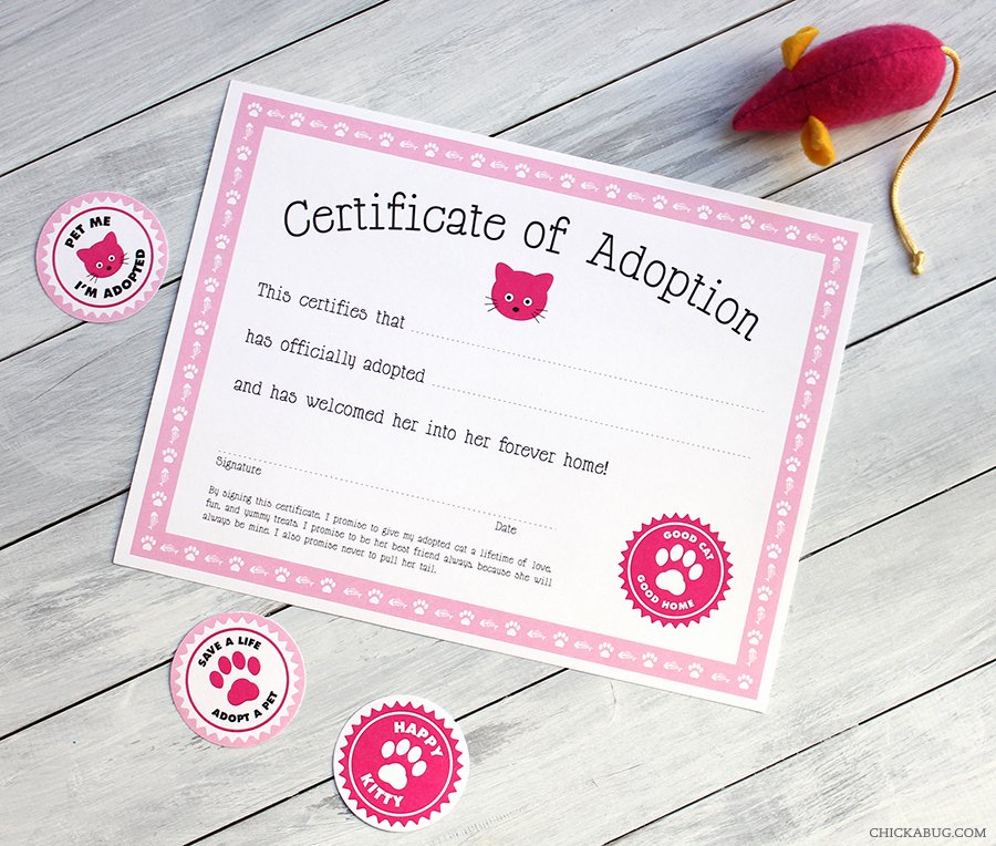Free Pet Adoption Certificate Template Awesome Free Printable Cat Adoption Kit