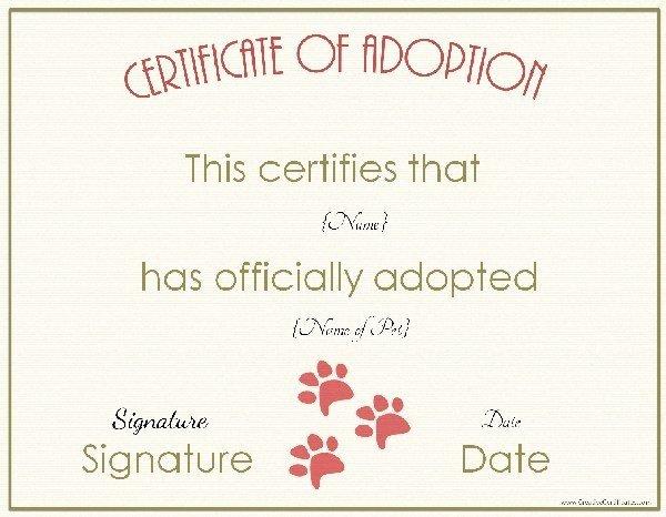 Free Pet Adoption Certificate Template Elegant 27 Of Animal Certificate Template