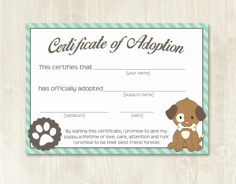 Free Pet Adoption Certificate Template Elegant Puppy Party Adoption Certificates Instant Download Adopt