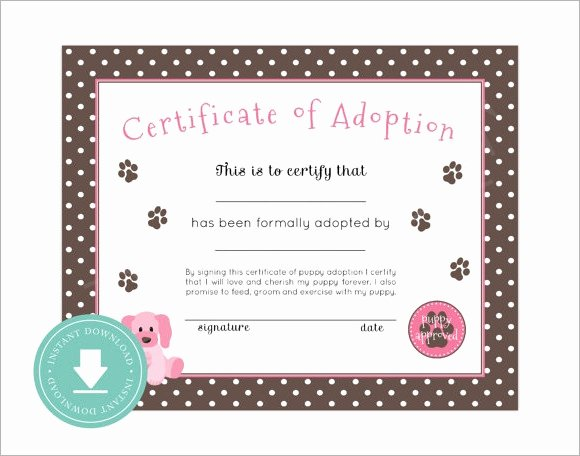 Free Pet Adoption Certificate Template Inspirational 26 Sample Adoption Certificates In Illustrator