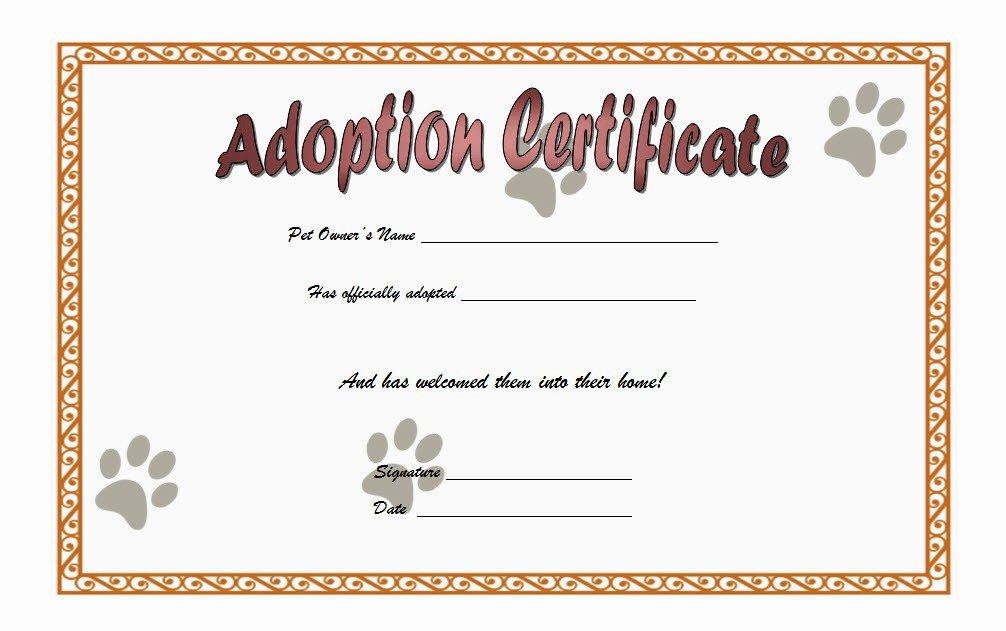 cat adoption certificate templates