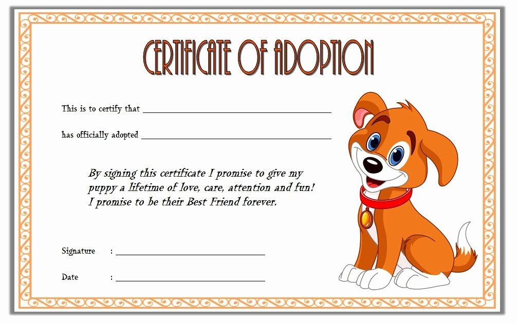 Free Pet Adoption Certificate Template Unique Pet Adoption Certificate Template 10 Best Ideas