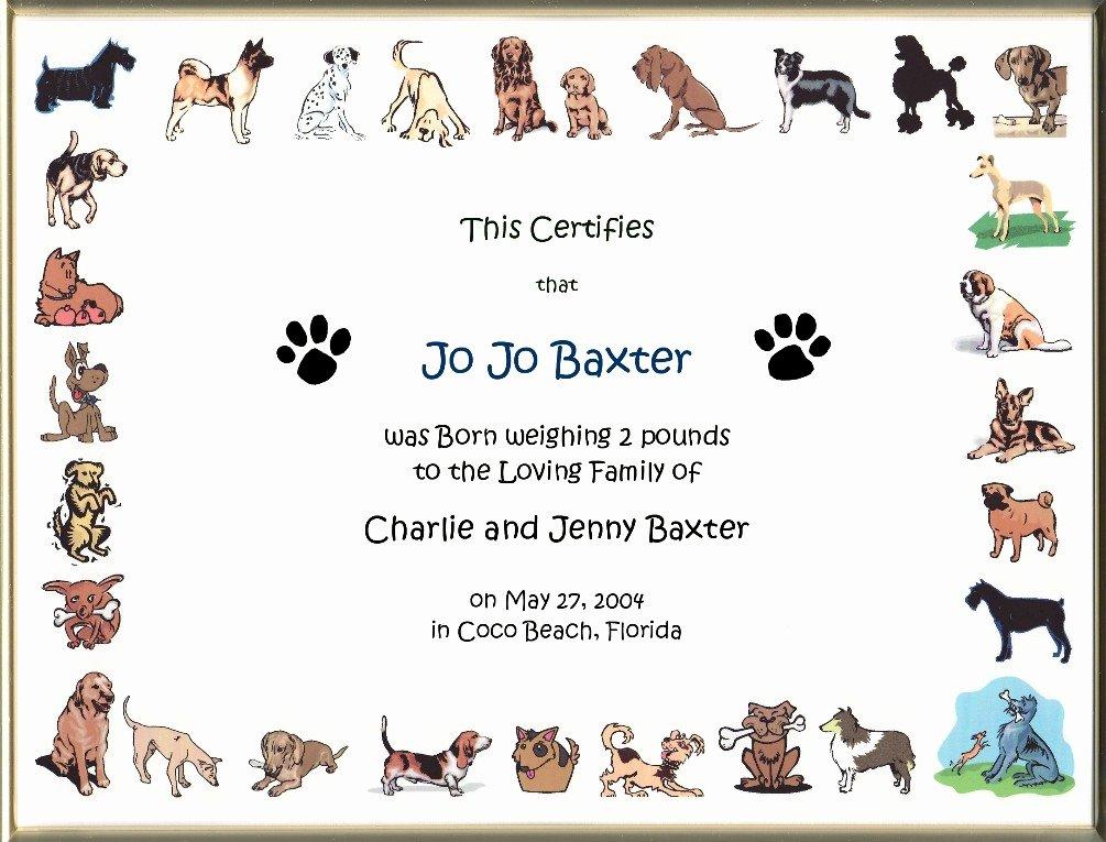 Free Pet Birth Certificate Template Awesome Keepsake Dog Birth 8 5 X 11 Inch Certificate Cartoon Dog