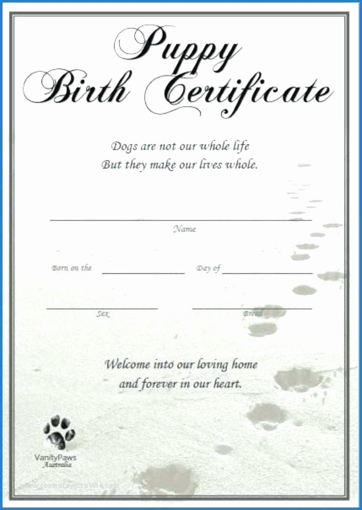 Free Pet Birth Certificate Template Lovely Ethercard