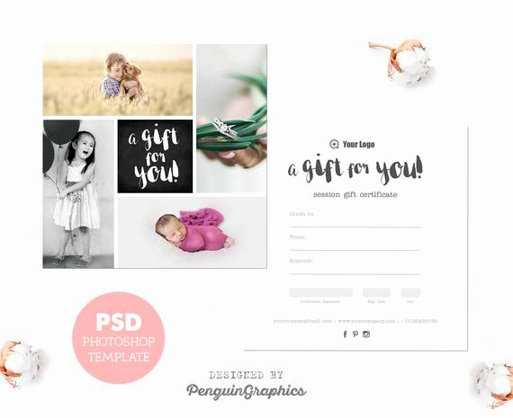 Free Photo Session Gift Certificate Template Fresh Gift Certificate Template Graphy Mini Session T Card