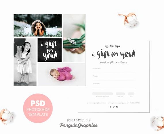 Free Photo Session Gift Certificate Template Lovely Gift Certificate Template Graphy Mini Session T