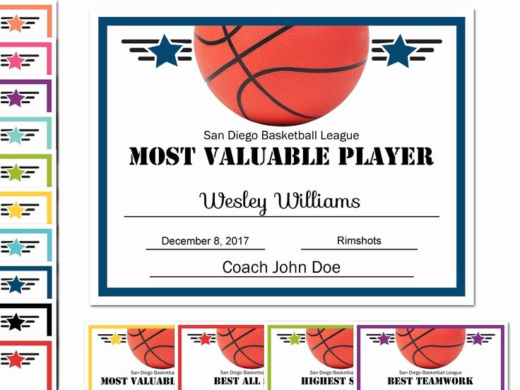 Free Printable Basketball Certificates Lovely 21 Best Diy Editable Certificates Images On Pinterest