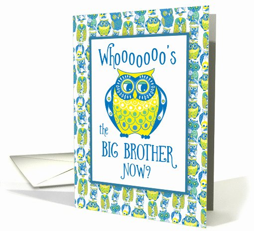 Free Printable Big Sister Certificate Inspirational Big Brother Congratulations Cute Owls Card
