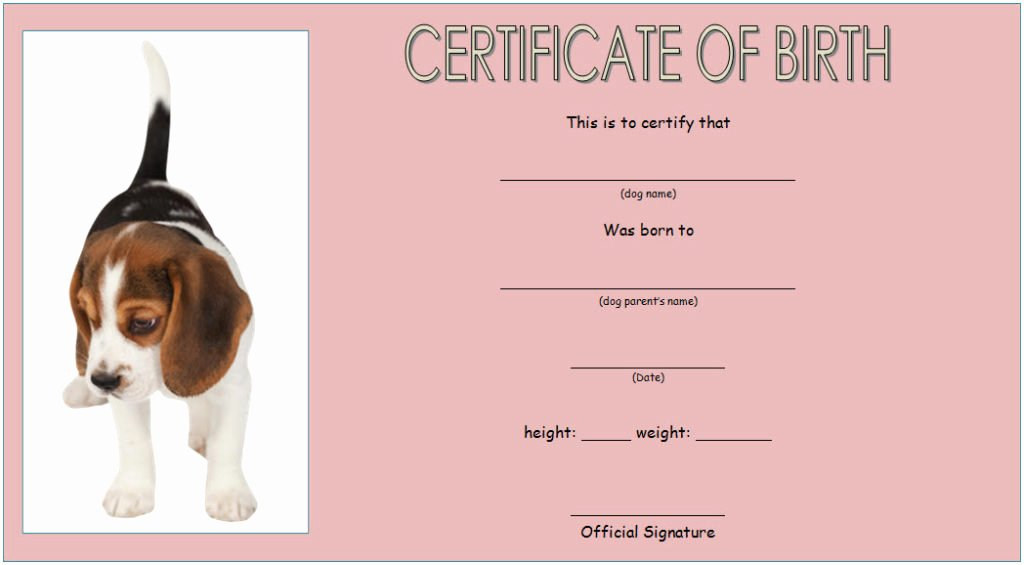 Free Printable Dog Birth Certificate Elegant Dog Birth Certificate Template Editable [9 Designs Free]