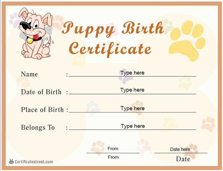 Free Printable Dog Birth Certificate New Certificate Street Free Award Certificate Templates No