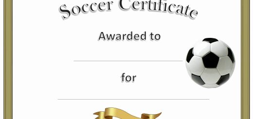 Free soccer Certificate Templates Best Of 10 Free Sample No Objection Certificate Templates