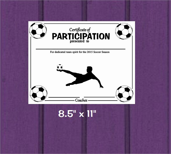 Free soccer Certificate Templates Lovely soccer Certificate Template 7 Download Free Documents