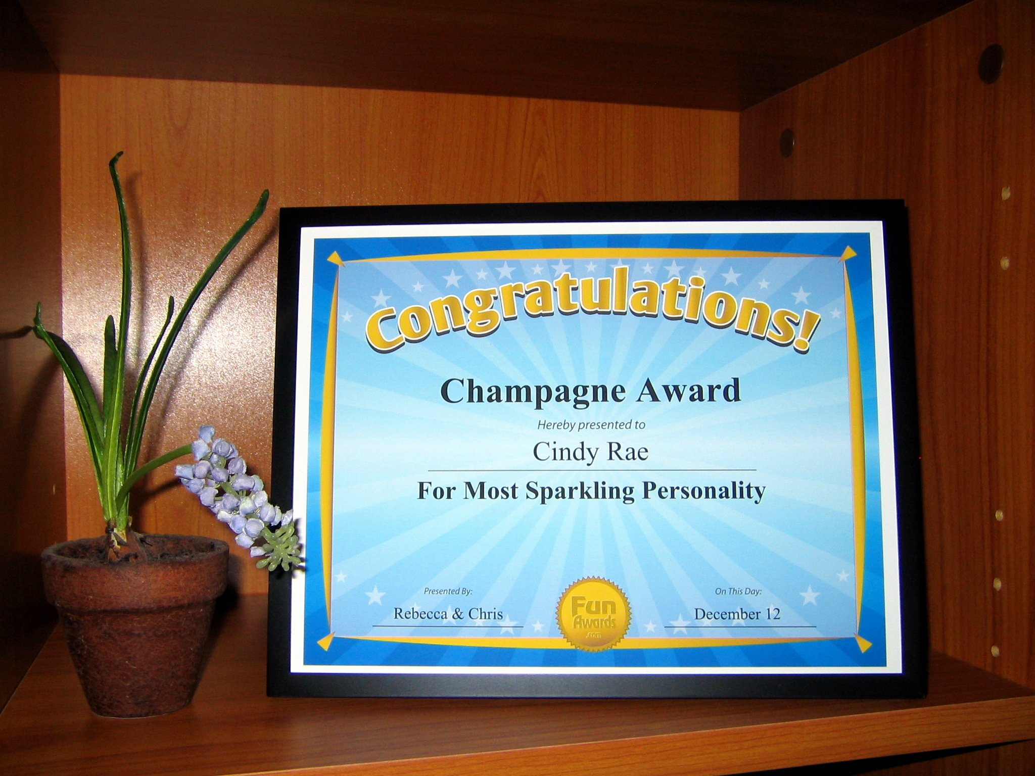 Funny Trophy Ideas for Work Inspirational Funny Staff Awards – Fun Awards Announces Sale to Rescue