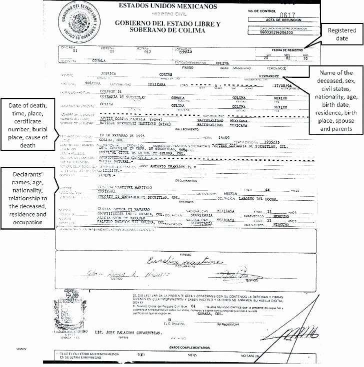 German Birth Certificate Template Luxury German Birth Certificate Template – Deservesfo