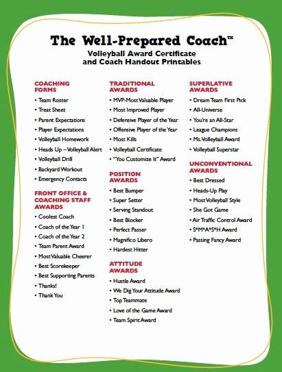 Girls Camp Award Ideas Elegant Volleyball Certificate Templates