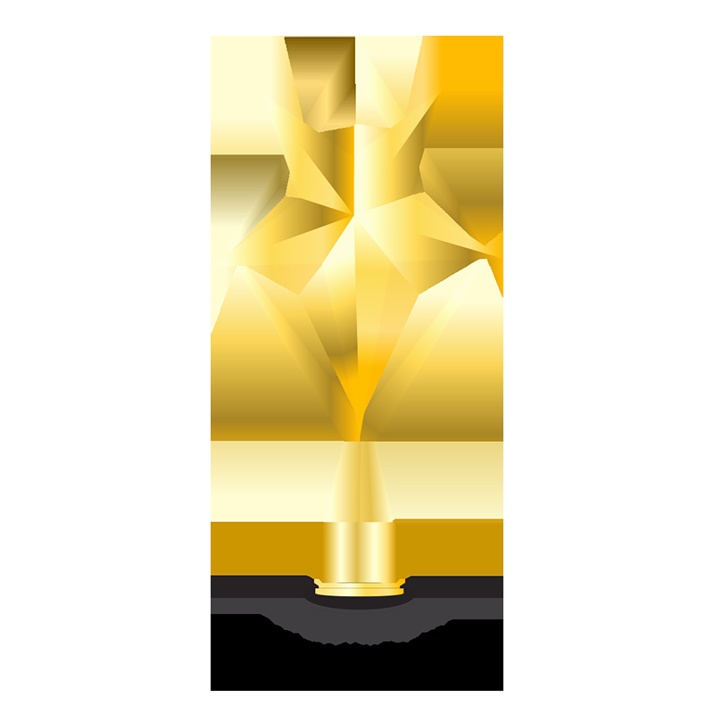 Gold Star Award Template Best Of Gold Trophy Trophies Gold Award Png Transparent Image
