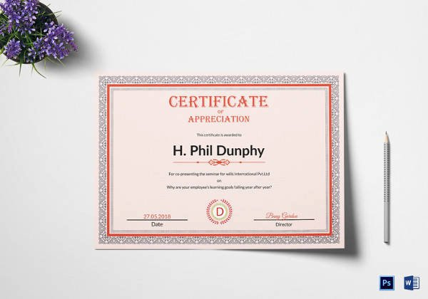 Google Docs Certificate Of Appreciation Beautiful Certificate Template 33 Download Documents In Pdf Word