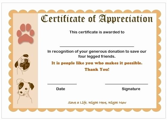 Google Docs Certificate Of Appreciation Best Of Sample Certificate Appreciation for A Donation