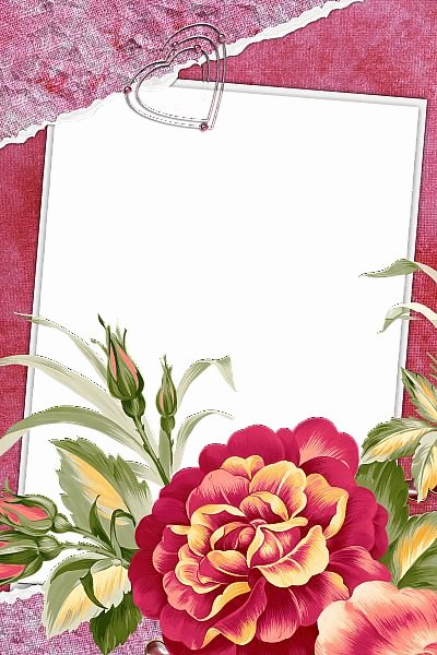 Graduation Borders and Backgrounds Elegant 723 Best Images About Graduation and Frames On Pinterest