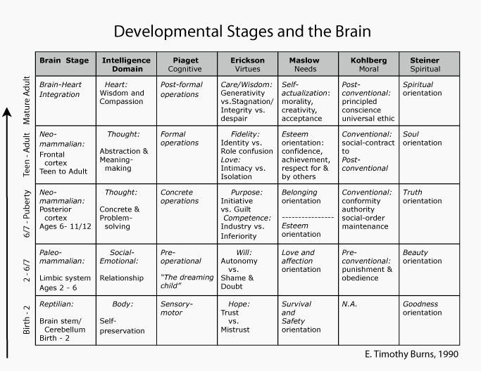 Growth and Development Chart Erikson Best Of Developmental Stages and the Brain Birth Through Adult