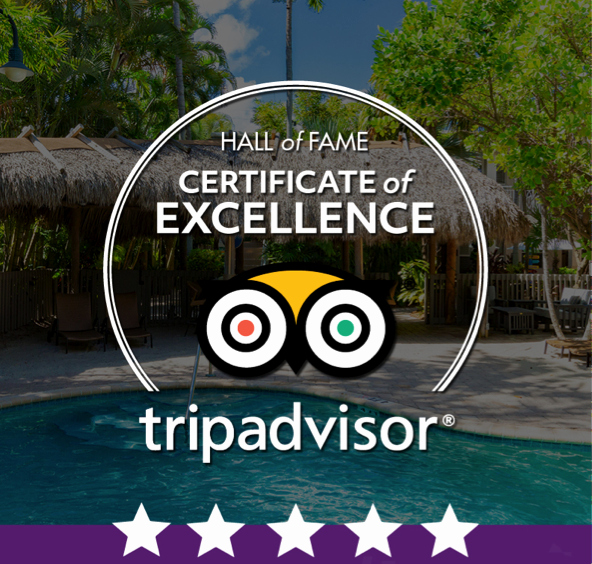 Hall Of Fame Certificate New Trip Advisor Hall Of Fame Certificate Of Excellence