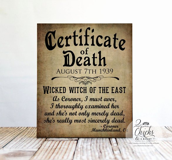 Haunted Mansion Death Certificate Template Unique 11 Sample Death Certificate Templates Pdf Doc