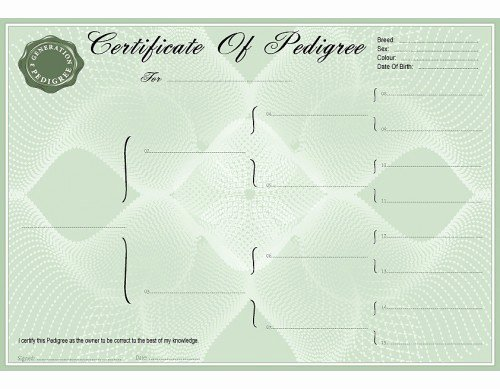 High Quality Certificate Paper Luxury Blank Green Pedigree Certificates Pedigree forms
