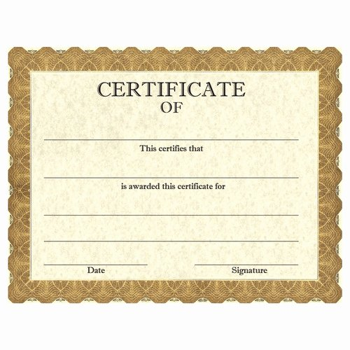 High Quality Certificate Paper New Horse Show Classic Gold Stock Certificate